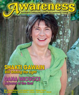 Shakti Gawain - Still Shining the light Dana Micucci Sojouns of the soul